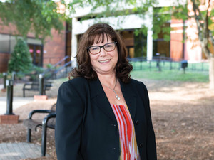 Delaney feature